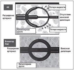 Что такое рациональная комбинированная антигипертензивная терапия: ингибитор АПФ + диуретик или + антагонист кальция?