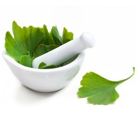 The Possibilities of Ginkgo Biloba Preparations in Strategy of Vascular Dementia Pharmacotherapy