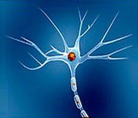 Европейский опыт диагностики и лечения заболеваний нервной системы