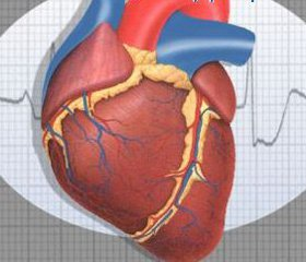 Феномен ишемического прекондиционирования: эффект глюкозного дисбаланса и антидиабетической терапии