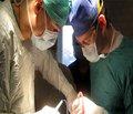 Мониторинг распространенности гемангиом в челюстно-лицевой области среди детского населения