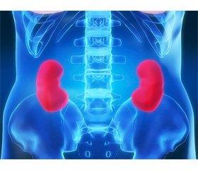 Etiopathogenesis of renal cell cancer