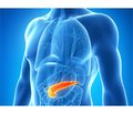Diagnosis and management of acute pancreatitis: review of modern guidelines (part 1)