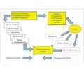 Дисфункція гіпоталамуса: етіологія, клініка, діагностика, лікування (методичні рекомендації)