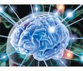 Цереброваскулярные заболевания: возможности аддитивной биорегуляционной терапии