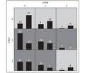 Значення однонуклеотидних поліморфізмів в генах mTOR (rs11121704) та ATG5 (rs510432) в розвитку алергічних захворювань у дітей