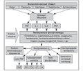 Тантум Верде® — рациональный выбор фармакотерапии тонзиллофарингитов