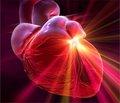Рамиприл (Рамизес) и торасемид (Торсид) в лечении пациентов с хронической сердечной недостаточностью: опыт украинских врачей