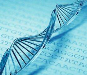 23andMe сравнила предсказательную силу генетических тестов и семейных историй