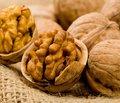 Ешьте больше орехов!
