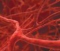 Гемодинамические эффекты молсидомина