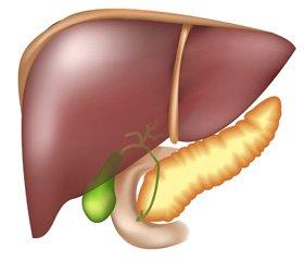 Анестезия и интраоперационная интенсивная терапия при трансплантации печени