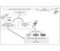 Транзиторный неонатальный сахарный диабет, ассоциированный с нарушением импринтинга хромосомы 6q24. Часть 2. Эпидемиология, этиология и патогенез