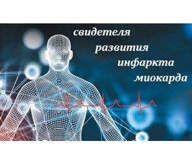Записки кардиомиоцита — свидетеля развития инфаркта миокарда