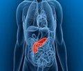 Малоинвазивные интервенционные технологии в оценке тяжести клинического течения острого некротического панкреатита