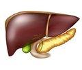 Лапароскопічні резекції печінки: види, класифікація й сучасний стан