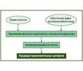 Стеатоз печени и стеатогепатит —  неизбежность смешанного генеза