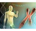 Отдельные аспекты остеопороза при дисгенезии гонад