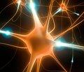 Исследовательская группа из Медицинского института Говарда Хьюза выяснила, что геном единичного нейрона может содержать более тысячи мутаций