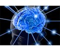 Классическая и парадоксальная эмболия в генезе инфаркта мозга
