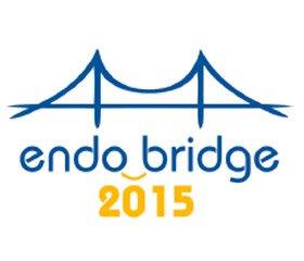 Endobridge святкує третю річницю