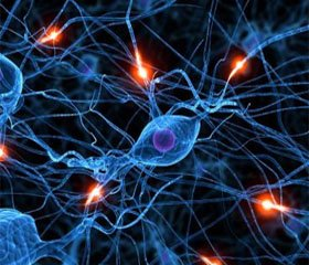 Етіологічна структура нейроінфекцій у клініці дитячих інфекційних хвороб м. Києва