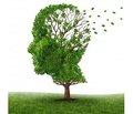 Корекція постінсультних когнітивних розладів