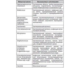 mey-ebut-ginekologiya-foto-zdorovogo-vlagalisha-devushki
