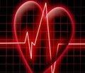 Питавастатин — новый ингибитор ГМГ-КоА- редуктазы: особенности клинической фармакологии и перспективы применения при лечении сердечно-сосудистых заболеваний