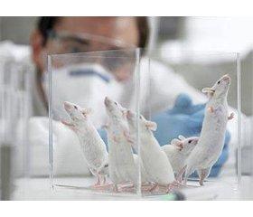 Вплив гіпобаричної гіпоксії напоказники протеолізу втканині щитоподібної залози щурів зарізної тривалості фотоперіоду