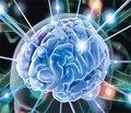 Характеристика эпилептического синдрома у детей грудного возраста с мальформациями коры головного мозга