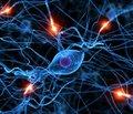 Принципы диагностики и терапии заболеваний периферической нервной системы