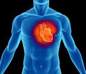 Современная роль корректоров метаболизма на примере мельдония при лечении хронических форм сердечно-сосудистых заболеваний