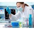 Вплив спиртової настоянки ламінарії нарівень тиреоїдних гормонів при експериментальному гіпотиреозі