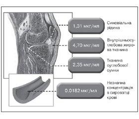 Вертеброгенний і суглобовий больовий синдром. Сучасна проблематика з позицій доказової медицини