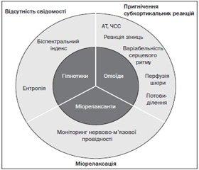 Сучасні методи об'єктивізації болю та ноцицепції