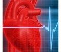 Стрес-індукована артеріальна гіпертензія таартеріальна гіпертензія військового часу — грізні виклики сучасній Україні