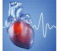 Профилактика тромботических осложнений сердечно-сосудистых заболеваний: в фокусе клопидогрель