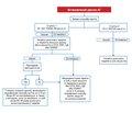 Глобальні практичні рекомендації з гіпертензії Міжнародного товариства гіпертензії 2020 року* (Розділ 8.Лікування артеріальної гіпертензії)
