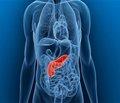 Нарушения углеводного обмена у больных с хроническим панкреатитом