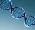Роль молекулярно-генетических факторов в развитии постменопаузального остеопороза