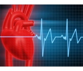 Experience in the use of extracorporal membrane oxygenation in the treatment of acute myocardial infarction complicated by cardiogenic shock
