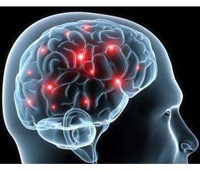 Видео запись вебинара «Старение мозга. Неврологические аспекты развития патологии ЦНС»