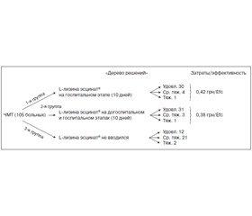 L-лизина эсцинат®: фармакоэкономическое обоснование применения при ЧМТ