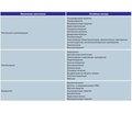 Растительный комплекс Вормил Фито: новые возможности лечения, профилактики и комплексной реабилитации осложнений глистной инвазии у детей