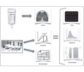 Problems in intraoperative blood loss compensation: strategies of volumetric hemodynamic support (analytical review)