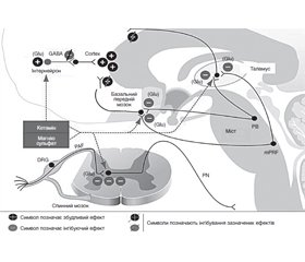 Low-opioid multimodal general anesthesia: components and mechanisms of formation