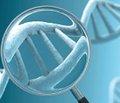 Американские ученые предложили  генетический метод диагностики всех видов рака
