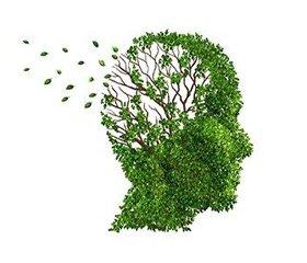 Когнитивные нарушения, обусловленные критическими состояниями, как проявление церебральной недостаточности
