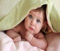 Особливості функціонального стану гепатобіліарної системи в дітей із пролонгованою кон'югаційною жовтяницею